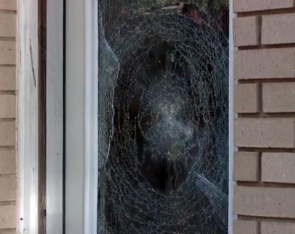 window security film