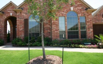 Tinting Your Home's Windows Can Save You Big This Summer